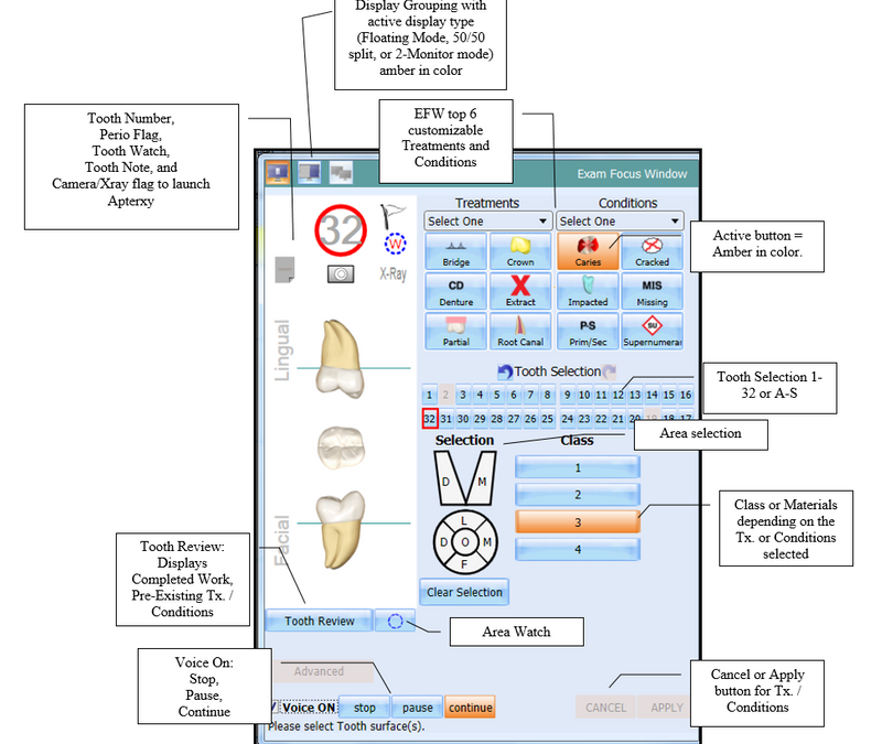 DenChart Exam Focus Window – Detail View